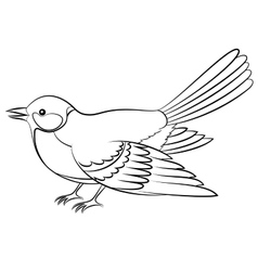 Bird titmouse isolated contours vector