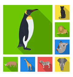 Different animals flat icons in set collection for vector