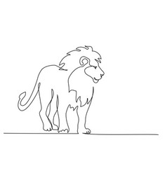 Lion with mane standing continuous one line vector