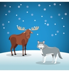 moose and wolf with snowy background image vector image