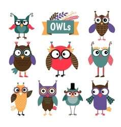 Owl coloured icons set vector