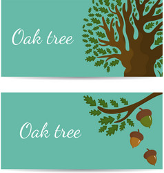 Set banners with oak tree and acorns vector