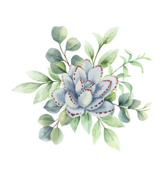 watercolor bouquet with eucalyptus branches vector image