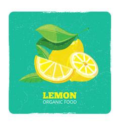 organic fruits concept - fresh lemons grunge card vector image vector image
