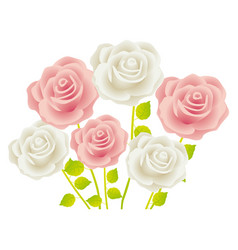 colorful bouquet roses floral design vector image vector image