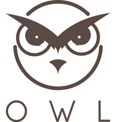 concept of abstract owl face vector image