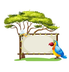 A parrot and a bee vector image vector image