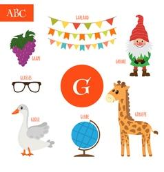 Letter G Cartoon alphabet for children Giraffe vector image