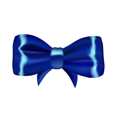 Blue gift bow vector