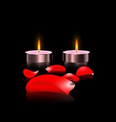 Candles and petals vector