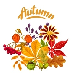 Card with autumn leaves and plants Design for vector