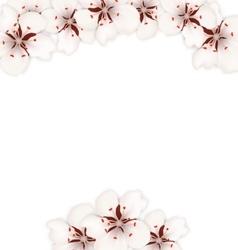 Frame with Sakura Flowers Blossom vector image
