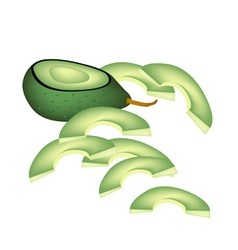 Fresh Green Avocados on A White Background vector