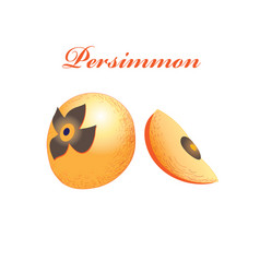 orange sweet persimmon vector image