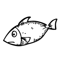 raw fish meat vector image