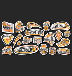 set for basketball vector image
