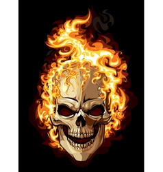 Burning skull on black background vector