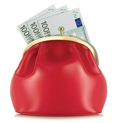 Wallet with euro vector image vector image