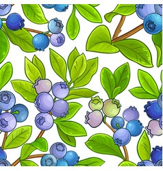 blueberry pattern on white background vector image