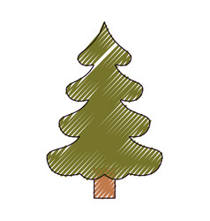 christmas tree pine with trunk on color crayon vector image