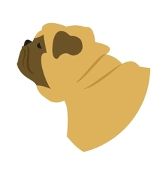 Dog head pug vector