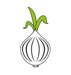 Garlic food flat vector