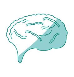 human brain symbol vector image