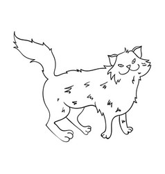 norwegian forest cat icon in outline style vector image