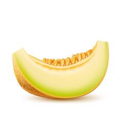 realistic fresh melon slice 3d icon vector image