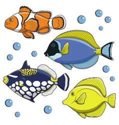 set tropical fish isolated objects vector image