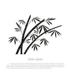 black bamboo silhouette on a white background vector image