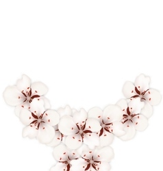 Frame with Sakura Flowers Blossom vector image vector image