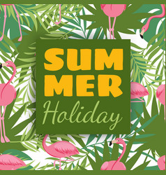 summer holidays card design with tropical plants vector image vector image