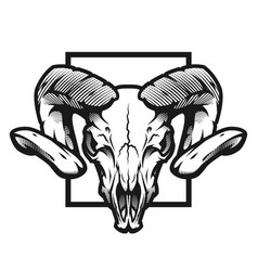 ram skull black and white emblem vector image
