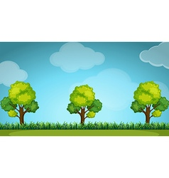 Scene with trees and grass vector