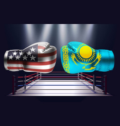 boxing gloves with prints of the usa and vector image