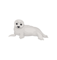 flat design of lying seal pup lying funny vector image