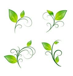 Leaf Floral Decoration Eco Set vector image