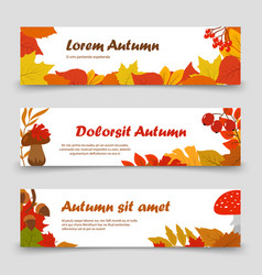 October banners autumn leaves horizontal banner vector