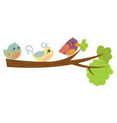 three lovely birds on green tree branch adorable vector image