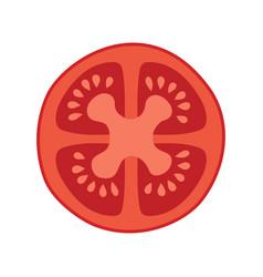 Tomato fresh sliced vector