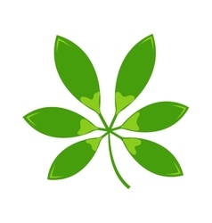 Leave icon vector image vector image