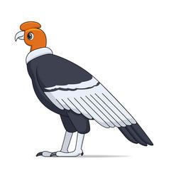 andean condor bird on a white background vector image