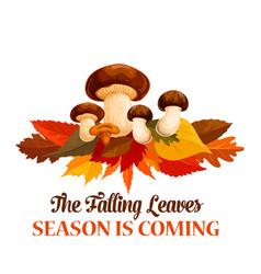 Autumn mushroom maple leaf greeting poster vector