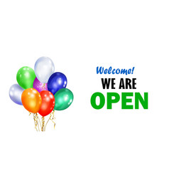 balloons and inscription we are open vector image