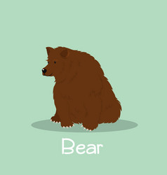Bear animal design on green background vector