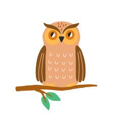 cute owl sitting on tree branch funny wild bird vector image