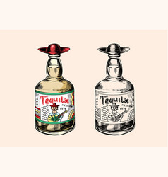 glass bottle with strong drink vintage mexican vector image