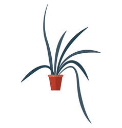 pot with flower plant isolated on white vector image