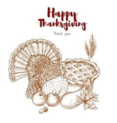 Thanksgiving holiday sketch turkey pie harvest vector